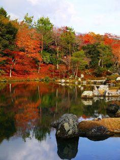 momijigari@Kyoto......