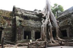 board post vietnam best travel from minh siem reap