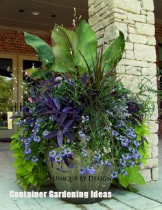 Colorful Shade Garden Pots and Plant Lists - Garden Design Ideas 2019 Garden Landscaping, Garden Vines, Outdoor Gardens, Container Plants, Garden Containers, Garden, Shade Garden, Garden Pots, Plants