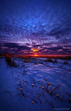 Sunset at Winter Field ~ Marvelous Nature