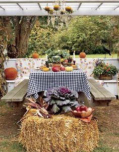 Susan Branch's Fall Dinner Setting on Martha's Vineyard