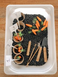 Toddler Sensory Bins, Baby Sensory Play, Sensory Activities Toddlers, Sensory Boxes, Sensory Table, Montessori Toddler, Montessori Activities, Spring Activities, Toddler Fun