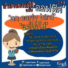 """สวัสดีตอนดึกค่าาา มีใครพรุ่งนี้ ต้องตื่นแต่เช้าาาาาาา บ้างไหมคะ >< ภาษาอังกฤษว่า """"แต่แต่ไก่โห่"""" คือ an early bird ตัวอย่างเช่น He is an early bird , he gets up at 6 o'clock every day. เขาเป็นพวกตื่นแต่ไก่โห่ เขาตื่นตอน 6 โมงเช้าทุกวันเลย ตื่นแต่ไก่โห่ ต้องรีบนอน นะคะ เพื่อนๆ ><   #เรียนภาษาอังกฤษออนไลน์ #เรียนภาษาอังกฤษ #ฝึกพูดภาษาอังกฤษ www.english4speak.com"""