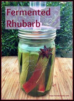 Fermented Rhubarb | http://Fermentools.com
