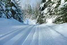 Cook County has the best cross country skiing MN has to offer - largest trail network in North America. Plan your winter cross-country ski getaway today. Lake Tahoe Skiing, Colorado Winter, Skiing Colorado, Jackson Hole Skiing, Photo Supplies, Cross Country Skiing, Winter Scenes, Plan Your Trip, Trail