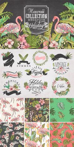 Hawaii collection Mega Pack & logos Graphic Box Creative Market- tropiCOOL