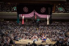 Watch sumo, accessible to foreigners and once in a lifetime experience.
