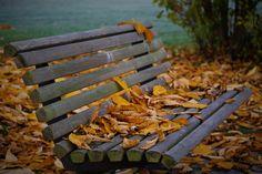 9 tips for å unngå en høstdepresjon Outdoor Furniture, Outdoor Decor, Park, Tips, Home Decor, Sun, Blogging, Decoration Home, Room Decor