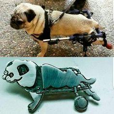 Joyas de Mascotas