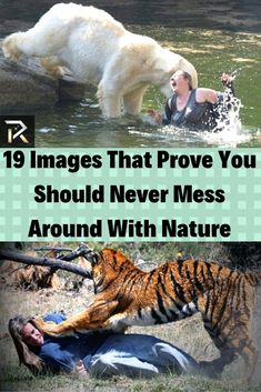 19 Images That Prove You Should Never Mess Around With Nature Blue Whale Heart, Hulk Spiderman, Show Of Hands, Put Things Into Perspective, Weird Pictures, Weird Art, Crazy People, Weird World, Pet Birds