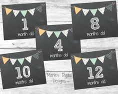 Great way to document your little one throughout their first year!    This package includes months 1 to 12    You will receive 12 8x10 inch