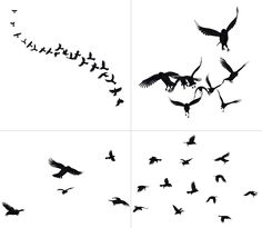 Crows In Flight PNG Stock by Jumpfer-Stock on deviantART