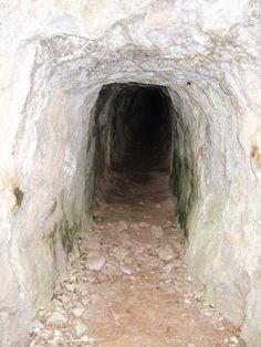 Oro inventava jocs raríssims, jo em deixava dur. Sempre parlava de túnels i passadissos que duien a llocs impossibles, Oro, com ara per sota dels tarongers, on, segons ella, podies tornar a èpoques passades i tractar amb difunts.