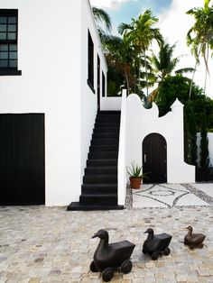 Architecture Adorable Costa Rican House Plans Using White Wall Painting And Black Stairs Brilliant Costa Rican House Plans With Contemporary Exterior Designs