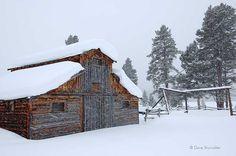 Rocky Mountain National Park Barn