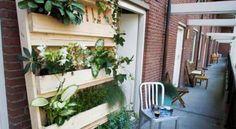 Pop up Pallets is ook te vinden op www.Homify.nl, een onafhankelijk platform for architectuur, binnenhuisarchitectuur, interieurontwerp en constructie.