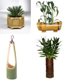 Bamboo Vase at Best Price in Kolhapur, Maharashtra Bamboo Planter, Bamboo Lamp, Flower Vases, Flower Pots, Bamboo Fountain, Bamboo Cups, Bamboo Building, Bamboo Architecture, Bamboo Design