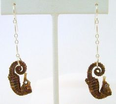 10 Shockingly Creepy Pieces of Taxidermy Jewelry - Oddee Weird Jewelry, Unique Jewelry, Taxidermy Jewelry, Bangle Bracelets, Bangles, How To Look Classy, Costume Jewelry, Washer Necklace, Creepy