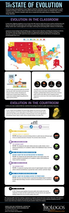 The State of Evolution | BioLogos [infographic]