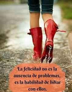 La felicidad es la habilidad de lidiar con los problemas*