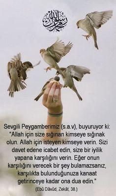 Ahmetkrtl  -  Arif ARSLAN (@arslan_dr)   Twitter