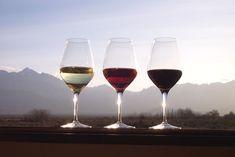 Os taninos nos vinhos são mais percebidos nos tintos (Foto: divulgação/internet)
