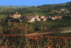 In Spain too, the grapes intended for production of Cava are carefully selected and harvested. The best grapes for making Cava are grown on very chalky soil at a height of between 656-1,476 feet (200-450 metres). European Destination, European Travel, Barolo Wine, Spanish Wine, Barcelona City, Country Landscaping, French Wine, France, Wine Country