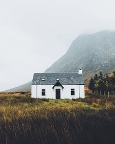 The Shiny Squirrel — delta-breezes: Daniel Casson | @dpc_photography_