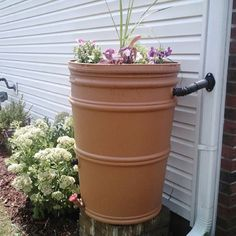 Rain catcher for the home with flower pot on top.