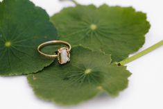 Raw Opal Hammered 14k Gold Ring - Melissa Tyson Designs Organic Engagement Rings, Raw Stone Engagement Rings, Traditional Engagement Rings, Raw Opal Ring, Opal Rings, 14k Gold Ring, Gold Rings, Rose Quartz Ring, Everyday Rings