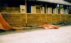 Woonongewoon - huis van stro