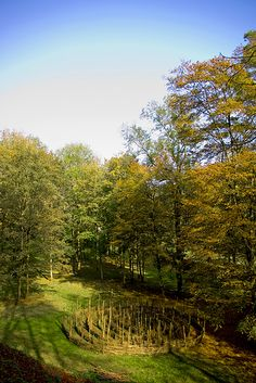 Compiègne Forest, Near Pierrefonds, Oise, Picardy, France. Does anyone know what the thing in the clearing is?