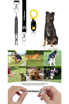 67 Best DOG TRAINING TOOLS images in 2019 | Dog training