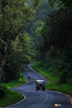 Road to Ooty , TN , India.