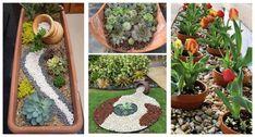 Perfektné nápady do záhrady a a terasu zo starých črepníkov. Succulents, Plants, Succulent Plants, Plant, Planets