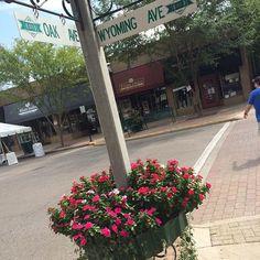 At the corner of Oak and Wyoming #livininthecin #Cincinnati #BeerWineFoodFestival2015