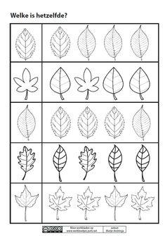 * Welk blad is hetzelfde? Pattern Worksheets For Kindergarten, Preschool Worksheets, Fall Preschool Activities, Leaf Template, Leaf Crafts, Autumn Crafts, Autumn Theme, Drawing Exercises, Autumn Leaves
