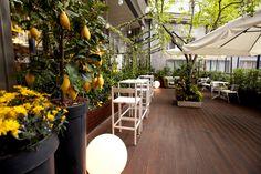 #garden #hotel #carlyle #milano #brerahotels