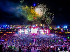 What You Need to Know Before Your First Electric Daisy Carnival Experience | The Odyssey