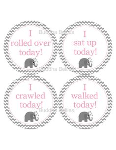 Hey, I found this really awesome Etsy listing at http://www.etsy.com/listing/119340141/grey-and-pink-elephant-milestone