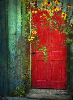 red door and yellow flowers.