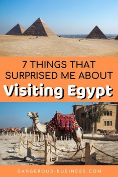 Is Egypt safe? Are the pyramids worth visiting? Should you book an Egypt tour? Here are some things that surprised me about Egypt travel. Egypt Travel, Africa Travel, Travel Guides, Travel Tips, Travel Checklist, Travel Goals, Safest Places To Travel, Egypt Culture, Africa Destinations