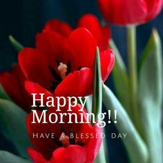 have a blessed day Beautiful Morning Pictures, Good Morning Picture, Good Morning Good Night, Good Morning Images, Happy Morning, Good Morning Greetings, Good Morning Wishes, Morning Messages, Morning Quotes In English