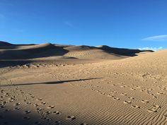 4:a timmars körning till The Sand Dunes från Denver men helt klart värt det. De är Nord Amerikas högsta sanddyner. Vi promenera upp för dom, inte så lätt kan jag berätta men väl uppe så fick vi en …