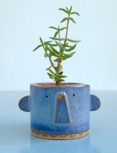 face plant pot/face planter/blue plant pot/face pot/succulent plant pot/cactus plant pot/gift for plant lover/unique gift/ornament for home