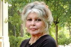 http://www.tootlafrance.ie/news/brigitte-bardot-becomes-great-grandmother