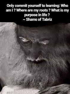 Rumi Quotes Life, Rumi Love Quotes, Sufi Quotes, Powerful Quotes, Spiritual Quotes, Wisdom Quotes, Islamic Quotes, Shams Tabrizi Quotes, Jalaluddin Rumi