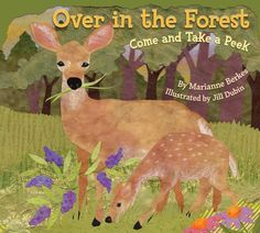 If your child is a nature and science lover, this is the book for her! It is a rhyming and counting book with beautiful illustrations, packed with facts about animals that live in the forest and what their footprints look like.