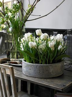 Friday Favorites - White Tulips - Maison de Cinq