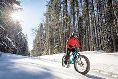 Le parc national d'Aiguebelle se veut un véritable trésor hivernal avec sa neige abondante et, surtout, ses petits camps rustiques en bois rond. Fat Bike, Parc National, Snow, Outdoor, Nordic Skiing, Suspension Bridge, Rustic Charm, Starry Night Sky, North West